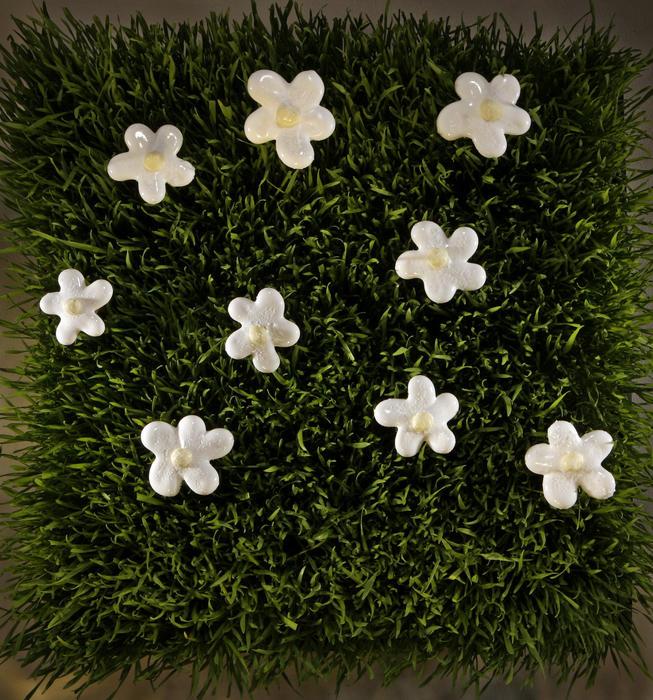 Marshmallow daisies