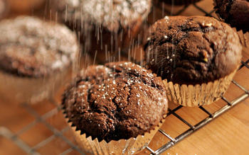 Double chocolate zucchini mini-muffins