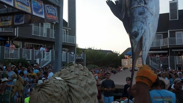 Alex Davis helps weigh a white marlin Wednesday afternoon at the 40th Annual White Marlin Open in Ocean City.