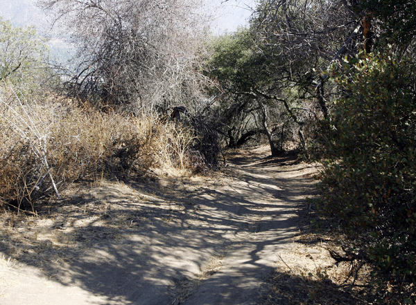 The La Cañada City Council approved an ordinance on Monday night that bans smoking at or within 20 feet of city-owned property, outdoor dining areas, shopping centers and public events. The law also prohibits smoking on recreational trails, including the La Canada Flintridge loop trail in Cherry Canyon.