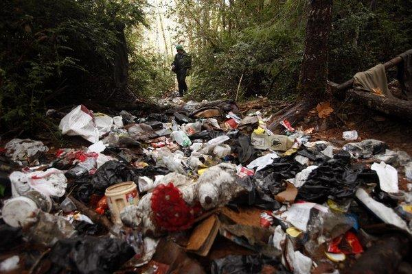 A wildlife technician inspects trash left by marijuana growers on the Hoopa Indian Reservation in Humboldt County on Nov. 15, 2012.