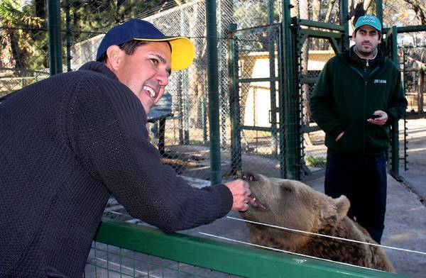 At the private Zoo Lujan in Argentina, Brazilian tourist Manu Peclat feeds sweet potato to Gordo, a 3-year-old brown bear.