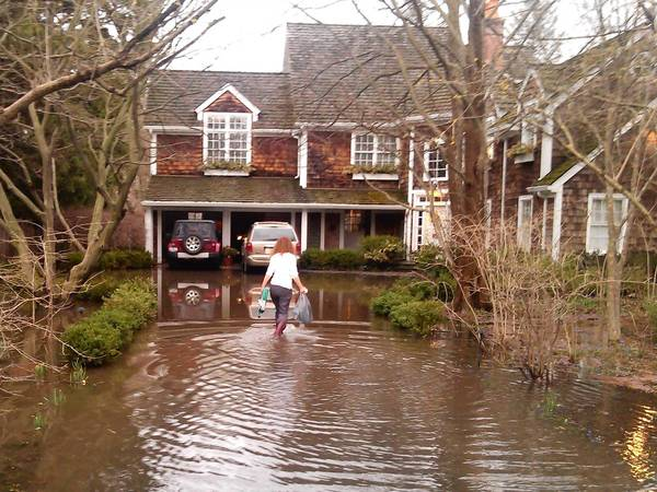 Jan Bawden wades through flooding at her home on DeWindt Road in Winnetka following the April 18 storm. DeWindt would benefit from the proposed $34.5 million Willow Road tunnel, recently approved by the Village Council.