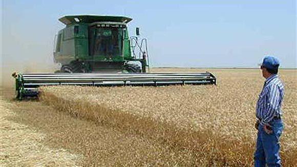 A John Deere combine in a field in Penalosa, Kan.