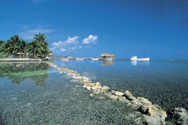 The Dandelion Chocolate tour of Belize includes time for snorkeling.
