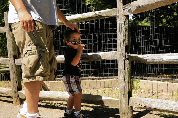 Richard Taone Jr., 2, and his father visit the zoo at Indian Boundary Park in West Rogers Park.