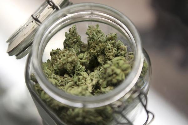 Medical marijuana is shown in a jar at The Joint Cooperative in Seattle, Washington in this January 27, 2012 file photo.