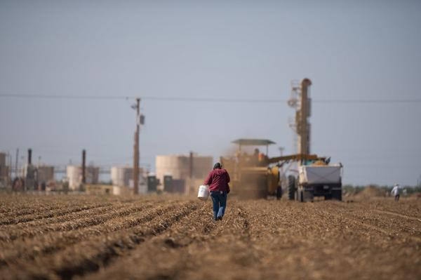 A bill in the state Legislature would regulate the use of hydraulic fracturing to extract oil from the ground. Above, a worker in a potato field near a Kern County fracking site.