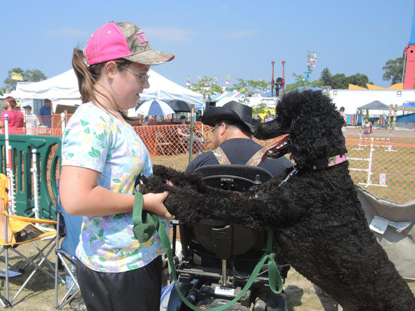 Service dog Shelby, a standard poodle, and Alyssa Schaefer, 12, of Alanson, celebrate Shelbys run at the dog agility competition at the Emmet-Charlevoix County Fair Wednesday.