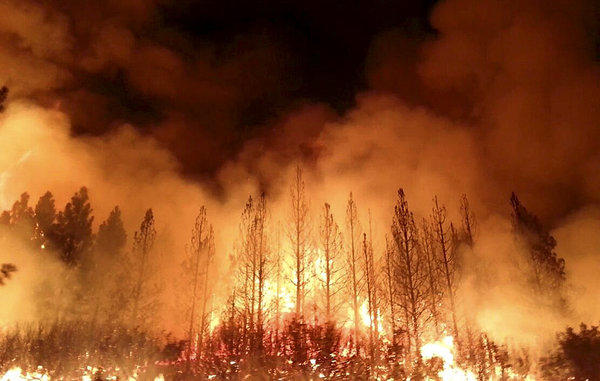 The Rim fire burns near Yosemite National Park, one of more than 50 major brush blazes burning across the western United States. Officials said the Rim fire, burning in remote, steep terrain, had grown to more than 84 square miles and was only 2% contained on Thursday, down from 5% a day earlier.