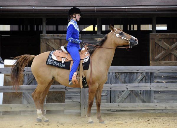 Zoe Wolfe, 17, of Frederick, and Echo, prepare themselves to compete in the 4-H Senior Western horse show at the Maryland State Fair.
