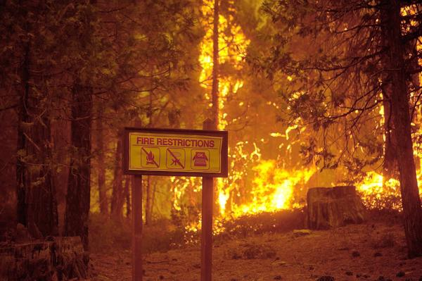 The Rim fire burns near the Yosemite National Park border in Tuolumne County.
