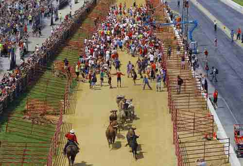 Participants run in the Great Bull Run in Petersburg, Virginia August 24, 2013. The quarter-mile event, shorter than the historical event held in Pamplona, Spain, was held on a local drag racing track.