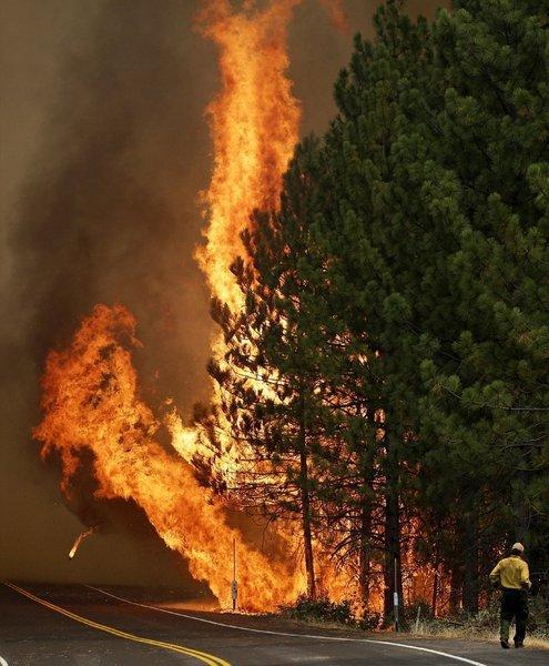 The Rim fire burns along California 120 near Yosemite National Park.