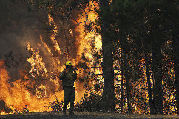 Firefighter A.J. Tevis watches the flames of the Rim Fire near Yosemite National Park.