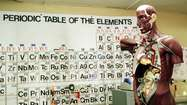 Element 115 might earn an official spot on the periodic table