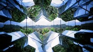 http://www.latimes.com/world/la-fg-ff-c1-brazil-art-forest-20130828-dto,0,5661416.htmlstory