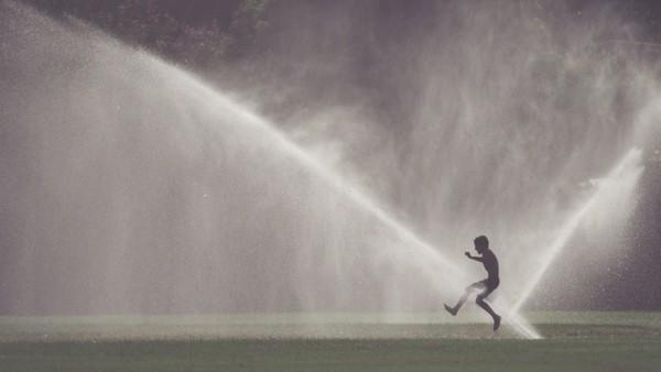 A sprinkler scene in the San Fernando Valley. (File Photo/Los Angeles Times)