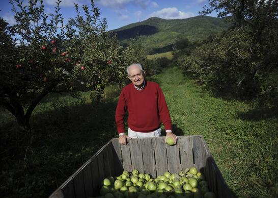 "Tom Burford, author of ""Apples of North America: Exceptional Varieties for Gardeners, Growers, and Cooks,"" a soon-to-be-released book by Timber Press, checks a crop near his home in Virginia."