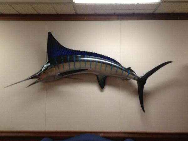 Gov. Jerry Brown has had this marlin, caught by his father, former Gov. Pat Brown, hung in the lobby of the governor's office.