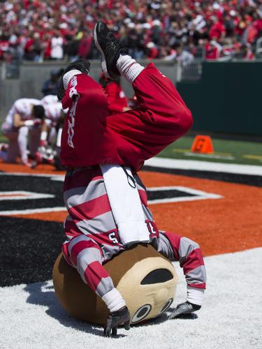 The Ohio State University mascot Brutus.