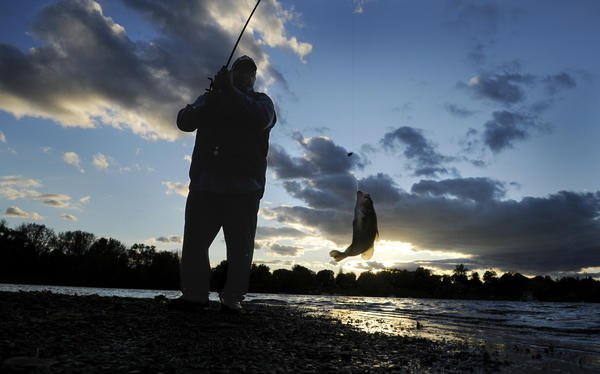 Courant photographer Stephen Dunn captured a photograph of Arthur Williams fishing at the Wethersfield Cove in Old Wethersfield.