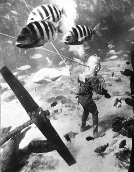 A diver walks among numerous fish at Marine Studios (later Marineland) in 1946. Now owned by the Georgia Aquarium, Marineland turns 75 this year. The survivor from the pre-Disney era of Florida roadside attractions began as an underwater movie studio.