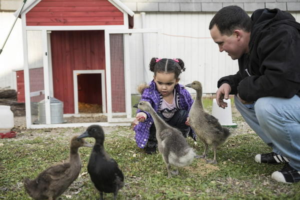 Dusten Brown and his biological daughter Veronica feed geese and ducks at Brown's home in Nowata, Okla.
