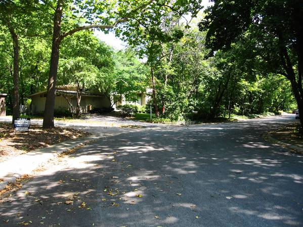 Officials say that part of the Shady Lane Estates subdivision could qualify as a historic district because of its collection of Ranch and Split-Level homes unique to Downers Grove.