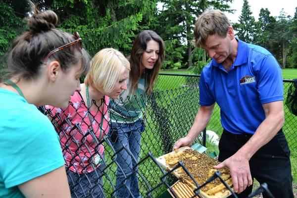 Greg Fischer is the Arboretum's fourth beekeeper. He's responsible for maintaining between 40,000 and 50,000 bees.