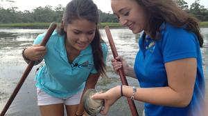 Bay Days festival delivers marine education along with the fun and food