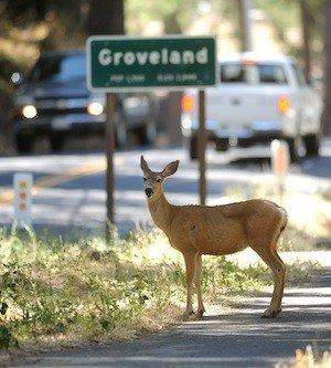 Park officials Friday announced the reopening of the entrance to Yosemite National Park from Groveland, Calif., along Big Oak Flat Road, also known as California 120.
