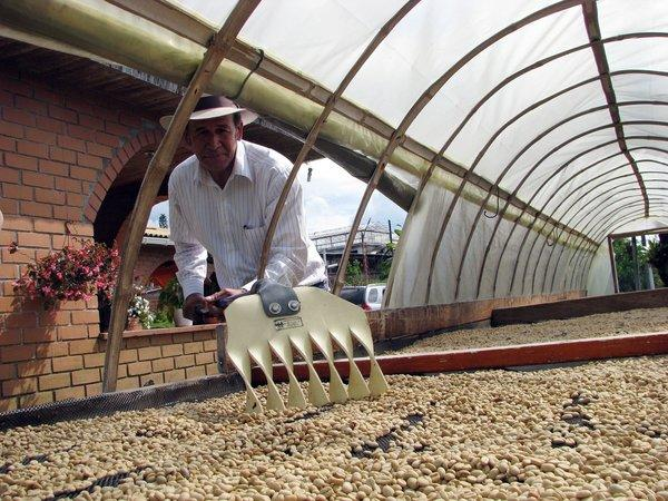 Luis Alirio Rios spreads coffee cherries for drying at his farm near Manizales, Colombia.