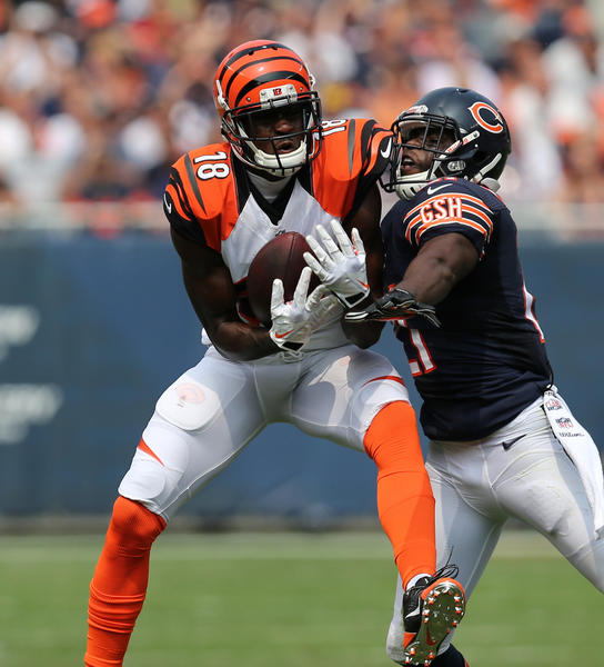 Bengals receiver A.J. Green makes a catch in front of Bears safety Major Wright.