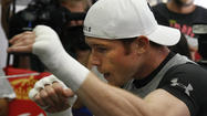 Saul 'Canelo' Alvarez trains for Floyd Mayweather Jr. fight