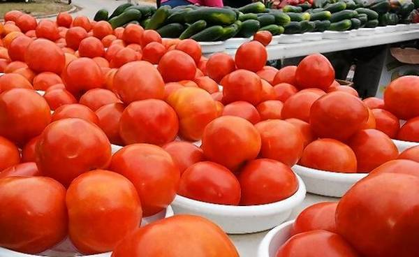 Tomatoes and cucumbers for sale at the Mount Dora Village Market.