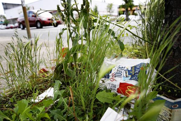 Aldermen on Wednesday voted to increase fines to as much as $1,500 and empower police to impound vehicles for throwing trash out of car windows.