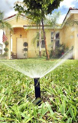 Environmental groups want conservation to play a bigger role in South Florida's long-term water supply planning, including a crackdown on landscape watering rules.