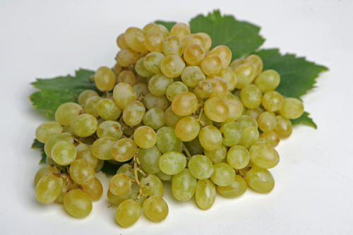 Notice the color on these Thompson seedless grapes. They're almost amber. That means they're perfect.