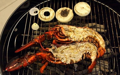 Grilled lobster with citrus and tarragon