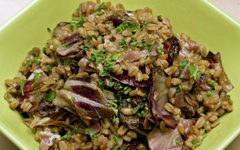 Mediterranean radicchio and farro salad