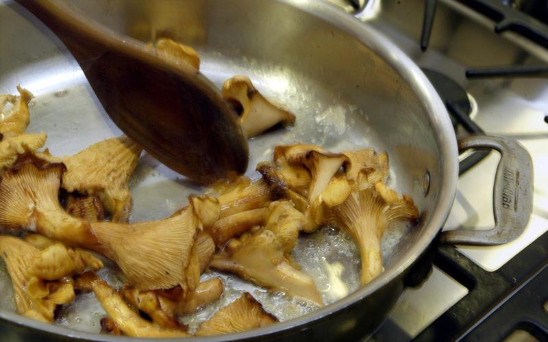 Seared turkey with wild mushroom sauce
