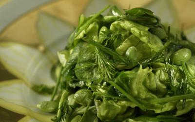 Spring herb salad