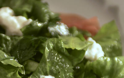 Escarole and parsley salad