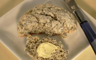 Maple Drive lemon poppy seed scones