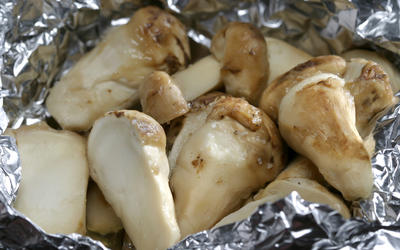 Grilled matsutake mushrooms