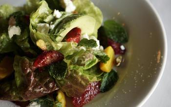 Red butter lettuce salad