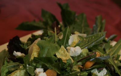 Dandelion greens salad with gooseberries and cilantro vinaigrette (Maskrossallad)
