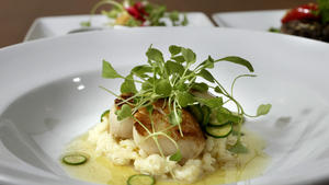 Seared scallops with vanilla risotto