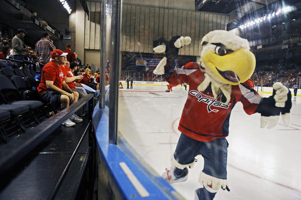 Washington Capitals mascot Slapshot pumps up fans at the Baltimore Hockey Classic inside Baltimore Arena.